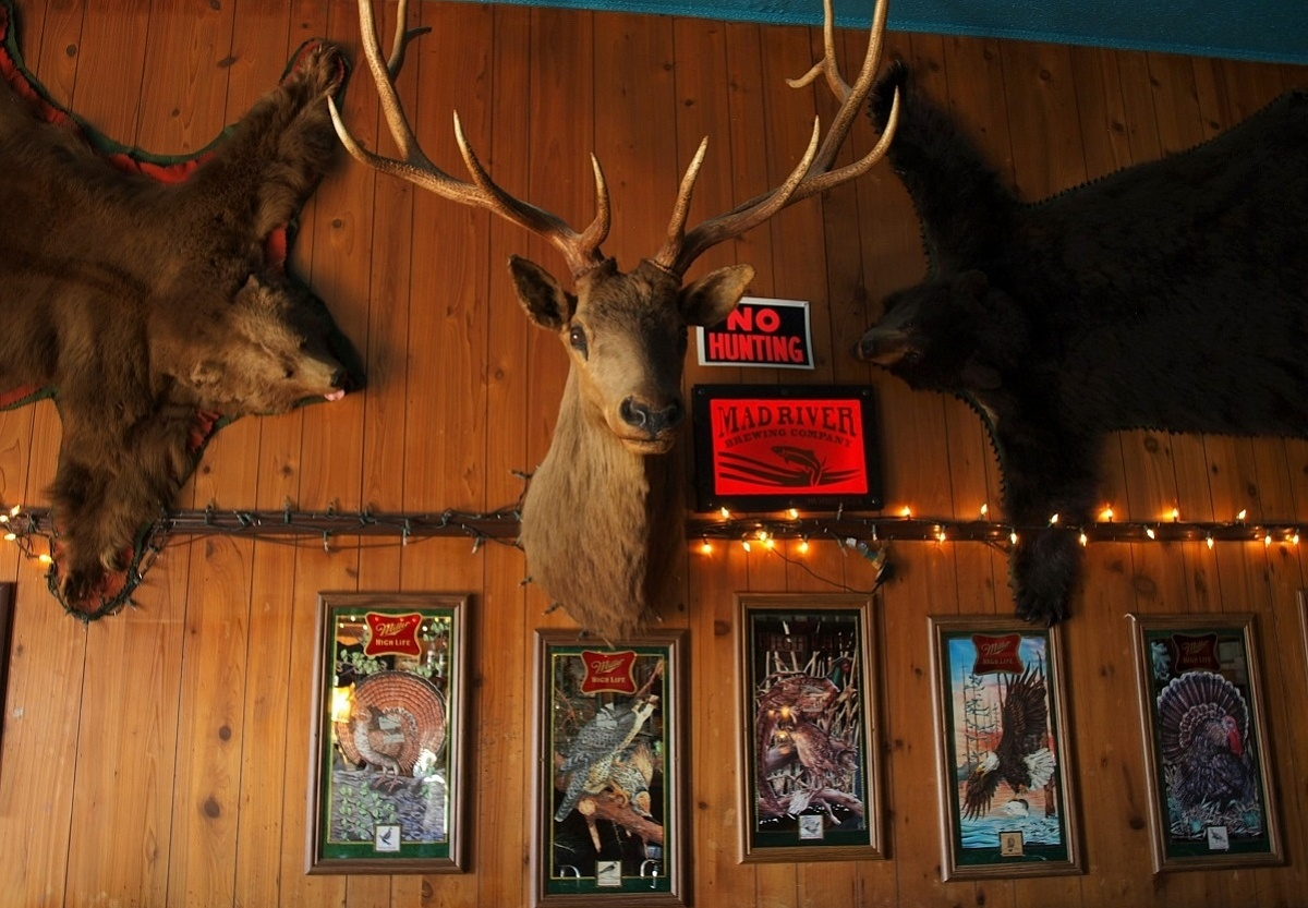 Dive Bars of Northern Californina