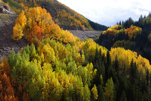 Fall Colors along the Million Dollar Highway