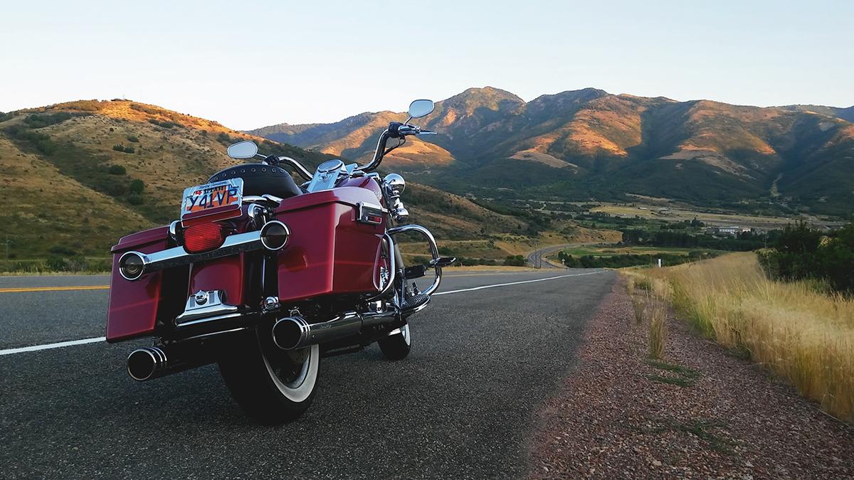 Motorcycle Owner