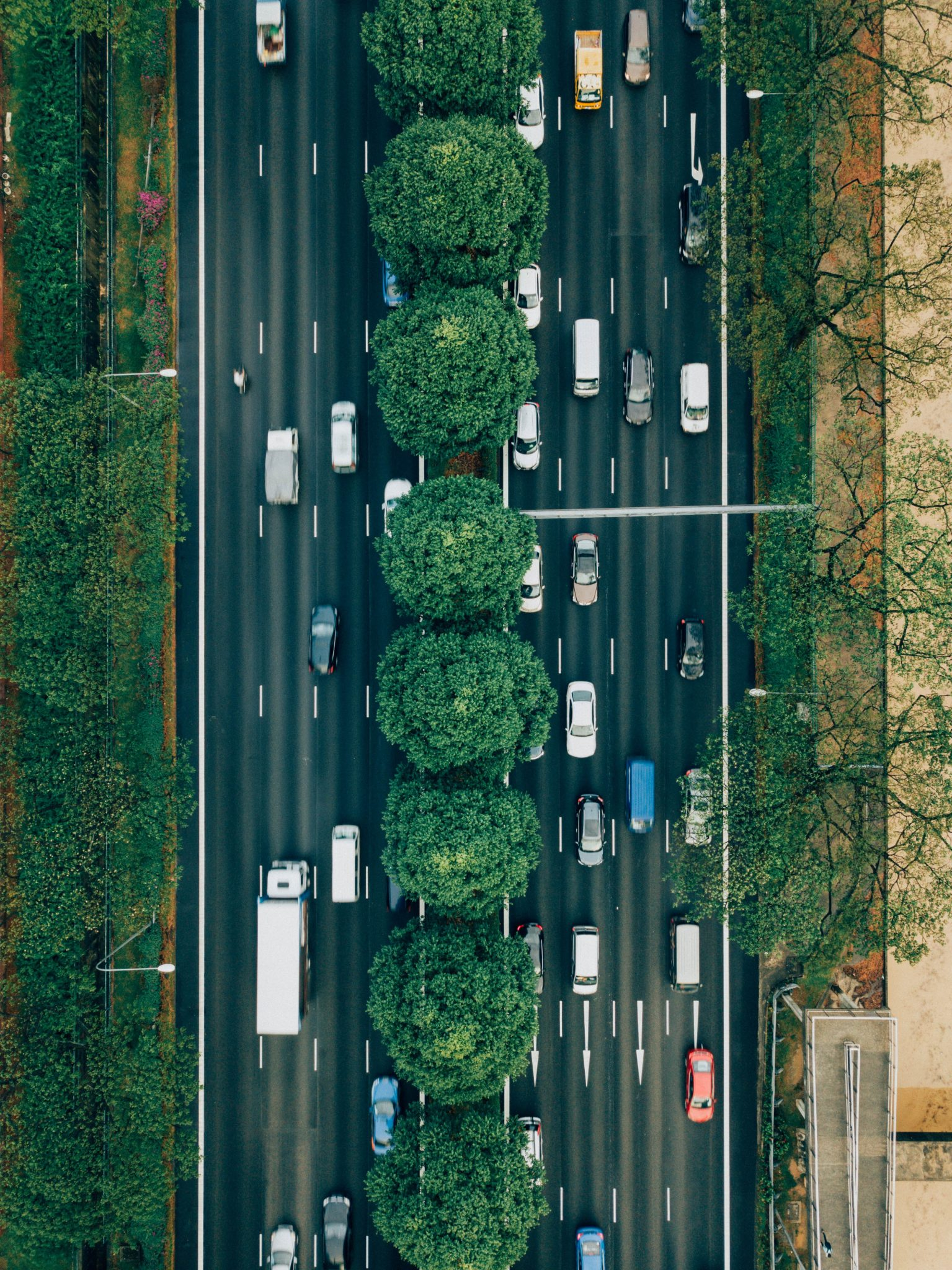 aerial photography of road with cars
