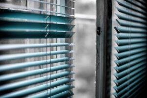 Dehumidifier green window blinds