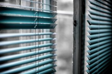 Bachelor Pad Dehumidifier green window blinds