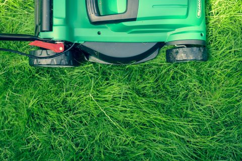 Maintain Your Lawn smart gardening green and black lawn mower on green grass