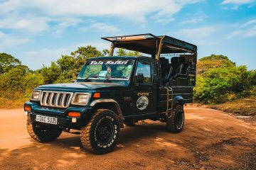 Vehicle for Your Business black jeep wrangler on dirt road during daytime