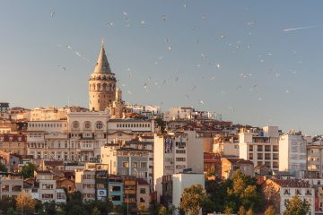 Turkey aerial view of buildings and flying birds