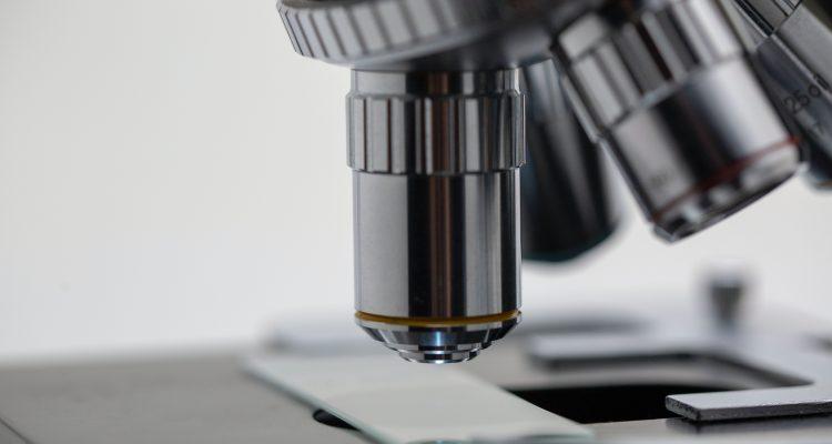 silver microscope Antibodies